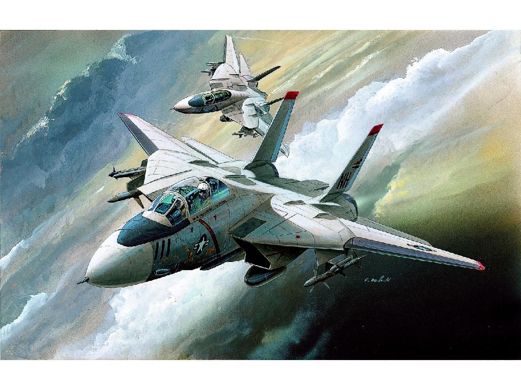 1/144 Plastikový model - letadlo 12608 - F-14